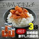 『いかんてキムチ』110g×3袋セット【宮崎産】割干し大根使用(『国産割り干キムチ漬』