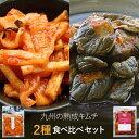 九州熟成キムチ2種 お試しセット国産 福袋 合成着色料