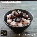 鹿児島の珍味 カンパチの生姜煮 120g×3袋セット 佃煮 甘辛 ご飯のお供 日本酒・焼酎・