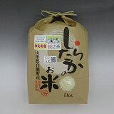 【平成26年産】 山形のお米【はえぬき】 白米5kg