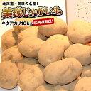 キタアカリ約10kg(M〜2Lサイズ)減農薬栽培【送料無料】北海道より直送じゃがいも・ジャガイモ【RCP】