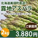 ご家庭用アスパラガス2kg(M〜2Lサイズ混合、500g×4)北海道美瑛産減農薬露地栽培【送料無料】【同梱不可/お届け日指定不可】