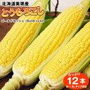 北海道美瑛産とうもろこしゴールドラッシュ12本【送料無料】(フル-ツトウモロコシ、もろこし、特別栽培農産物)【RCP】