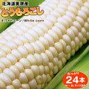 北海道美瑛産とうもろこしホワイトコーン24本【送料無料】(フル-ツトウモロコシ、もろこし、特別栽培農産物)【RCP】