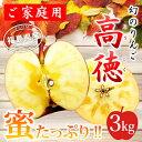 【送料無料】ご家庭用 福島産 高徳りんご3kg(9〜16玉)家庭用、こうとく、林檎、リンゴ、りんご、蜜、【RCP】