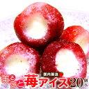 まるごと苺アイス 20粒(贈り物 ギフト 苺 いちご イチゴアイス あいす 練乳アイス ミルク 母の日 父の日 お誕生日 お土産)【送料無料】