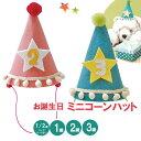 ハーフバースデー 1歳 2歳 3歳 誕生日 飾り 飾り付け 帽子 【DM便は送料無料!】男の子 女の子 パーティーグッズ ネネパルティ コーンハット 即日発送 【あす楽対応】