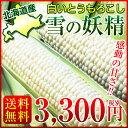 北海道産 とうもろこし 雪の妖精 約4kg(11〜15本) ...