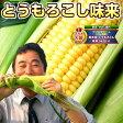 とうもろこし 北海道産 味来(みらい)約4kg(11本〜15本) 送料無料 朝採りトウモロコシ
