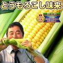 とうもろこし 北海道産 味来(みらい)約4kg(1