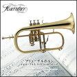 【SALE】 【送料無料】 Kaerntner フリューゲルホルン Kaerntner ケルントナー KFG-50 初心者用 入門用 練習 コンサート ステージ 【代引不可】 【02P03Dec16】