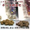 チョコ納豆セット グリーンパール納豆本舗 国産 宮城県産 おやつ おつまみ 【代引不可】
