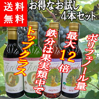 Sampler set is bargain! Scrap wind-up wine bag ★ scrap wind-up wine drinking than set 360ml×4 book ( ナドーレ red, Faure red, white, rosé )