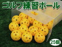 ゴルフ 練習用ボール 練習用ゴルフボール 25球セット ゴルフ用 トレーニングボール【あす楽対応】