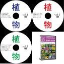 中学受験理科植物DVD全3枚