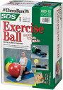 D&M(ディーエム) SDSエクササイズボール SDS-65 プロシリーズ