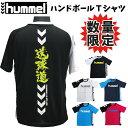 【6月度 月間優良ショップ受賞】【限定モデル】ヒュンメル ハンドボールTシャツ 送球道 HAP1135H hummel