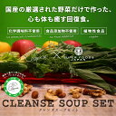 【送料無料】クレンズスープセット/国産の厳選された野菜だけで作った、心も体も癒す回復食/各1食入り4個セット/かぼちゃスープ/しょうがと人参のスパイシースープ/...