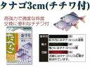 オーナー たなご3cmハリス(チチワ付)No.26510(タナゴばり) ・メール便可