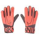 ナイキ(NIKE) ゴールキーパー マッチ サッカーグローブ GS3882-892HO19 (Men's)