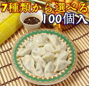 【1900円2袋セット】選べる中華水餃子お試し 合計100個入 生餃子 厚皮タイプ 焼き餃子 冷凍