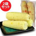 糯玉米棒【2袋セット】冷凍とうもろこし 1袋に2本入 粘玉米...
