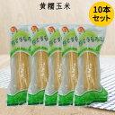 黄糯玉米(1本入) 【10本セット】備蓄食 黄もちとうもろこ...