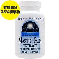 [お得サイズ]マスティックガム500mg120粒[ダイエット・健康/サプリメント/健康サプリ/植物・