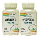 【2個セット】ビタミンC 1000mg 100粒(2段階タイムリリース型)054-04450