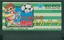【中古】ファミコンソフト FC くにおくんの熱血サッカーリーグ (箱説なし)