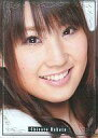 【中古】アイドル(AKB48 SKE48)/AKB48オフィシャルトレーディングカードvol.1 sr-031 : 中田ちさと/レギュラーカード/AKB48オフィシャルトレーディングカードvol.1