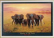 Elephant-in-the-sunset puzzle 1000 pieces