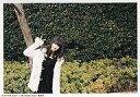 【中古】生写真(AKB48・SKE48)/アイドル/AKB48 柏木由紀/写真集「ゆ、ゆ、ゆきりん…」セブンネット限定予約特典