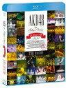 【25日24時間限定 エントリーでP最大26.5倍】【中古】邦楽Blu-ray Disc AKB48 in TOKYO DOME 〜1830mの夢〜 SINGLE SELECTION