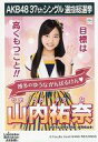 【中古】生写真(AKB48・SKE48)/アイドル/HKT48 山内祐奈/CD「ラブラドール・レトリバー」劇場盤特典