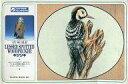 【中古】プラモデル 1/1 レッサー・スポッテッド・ウッドペッカー キツツキ シリーズNo.5 [GX1315]