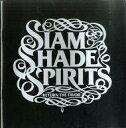 【中古】パンフレット(ライブ・コンサート) パンフ)SIAM SHADE SPIRIT RETURN THE FAVOR