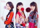 【中古】ポスター(女性) ポスター Perfume 「CD If you wanna 完全生産限定盤/初回限定盤」 予約購入特典