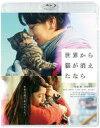【中古】邦画Blu-ray Disc 世界から猫が消えたなら