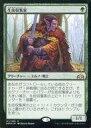 【中古】マジックザギャザリング/日本語版FOIL/R/ラヴニカのギルド/緑 [R] : 【FOIL】生皮収集家/Pelt Collector