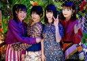【中古】生写真(AKB48・SKE48)/アイドル/NMB48 川上礼奈・城恵理子・南羽諒・山本望叶/CD「床の間正座娘」通常盤(Type-D)(YRCS-90163)共通特典生写真