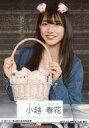 【エントリーでポイント10倍!(9月26日01:59まで!)】【中古】生写真(AKB48・SKE48)/アイドル/NGT48 小越春花/上半身・座り/NGT48 5/30(土)西×西のお局相談室 記念生写真