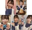 【中古】生写真(AKB48・SKE48)/アイドル/NGT48 ◇小越春花/NGT48 2021年3月度 net shop限定個別生写真 vol.3 「2021.MARCH」 5種コンプリートセット