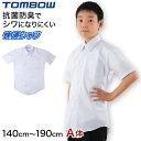 形態安定 抗菌防臭 半袖カッターシャツ 140cmA〜190cmA (ワイシャツ yシャツ シャツ