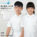 スクール用 半袖ポロシャツ 100cmA〜160cmA (半袖シャツ 白シャツ ホワイト 小学生 中学生 男女兼用 男子用 女子用)
