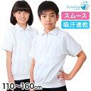 半袖 体操服 衿付き 男子 女子 110〜160cm (半そ...
