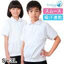 体操服 半袖 衿付き S〜3L (半そで 体操着 大きいサイズ ゆったり 半袖体操服 小学校 小学生 男子 女子 スクール 子供 子ども キッズ) (送料無料)
