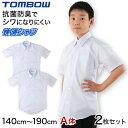 【2枚セット】スクールシャツ 半袖 男子 形態安定 トンボ 140cmA〜190cmA (学生服 カッターシャツ TOMBOW ワイシャツ Yシャツ)【取寄せ】