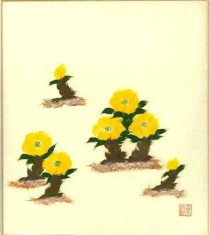 冬季一月出生花粘贴画阿多尼斯和恒河你散纸阿多尼斯,新年元旦草-