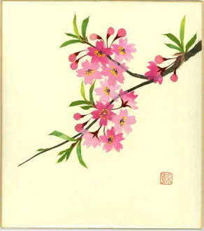 幼师纸剪贴画花朵-撕裂四月出生花粘贴画樱花散纸樱桃开花的彩色的纸日本绘画季节性绘